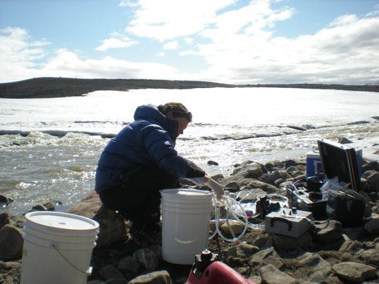 Postdoc Karen Cameron amongst filtration lines